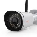 FI9900P (HD, WiFi, P2P)